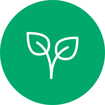 homeopathy icon of leaves indicating nature