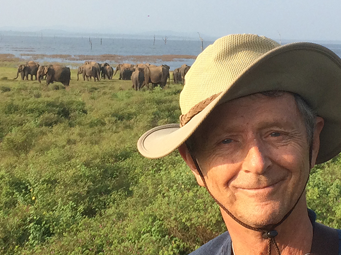 Dr. Julek Meissner, in Africa, with a herd of elephants